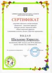 Достижения детей_5